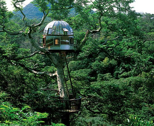 IF5elxsWlqfk72da4MXvcXsXo1 500 Ten Amazing Treehouses