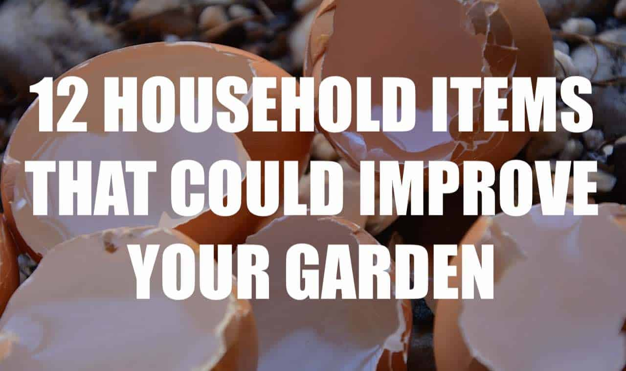 12 Surprising Household Items that could Improve your Garden