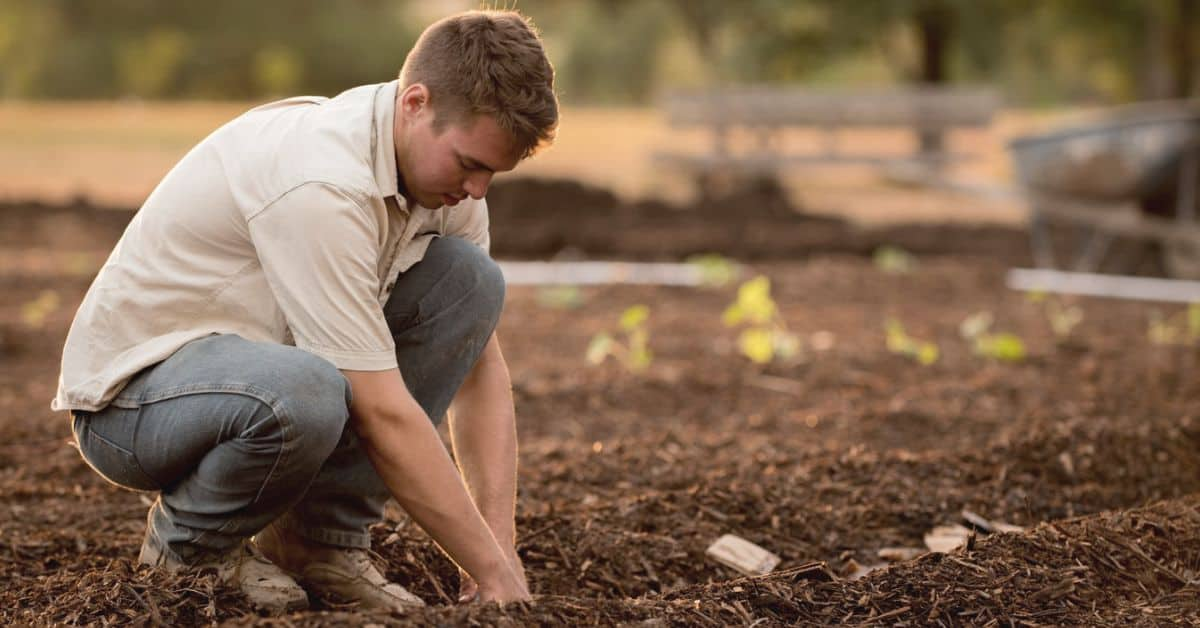 15-gardening-companion-apps