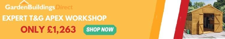 BillyOh Expert Apex Workshop Ad Banner