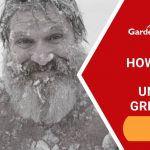 How to Grow in an Unheated Greenhouse