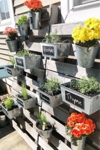 plants including yellow plant hanging vertically off a wooden planter in steel trays labelled with chalk