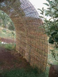 wood in a cylindrical archway formation over a path with some tree bark on the ground