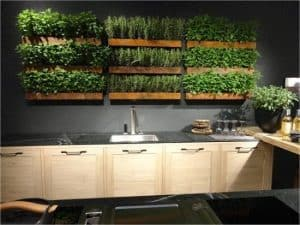 overgrown plants on a kitchen wall in wooden planters suspended vertically in rows of three making a total of 9
