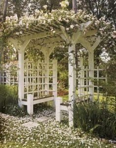 white pergola in a flowery garden during spring with all the blossom on the ground and the pergola made out of wood