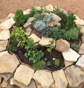 a spiral/question mark/circle shaped arrangement of stones with plants in between