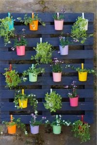 an old wooden pallet painted navy blue with coloured plant pots hanging off