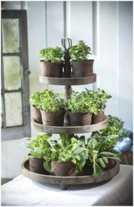 old wedding cake stands tiered vertically and filled with potted plants