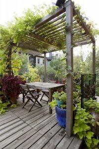 a wooden pergola/canopy with wooden beams spanning the roof, covered by climbing plants, moss and trees and on some decking with a table in the middle and some metal gating around the outside of the decking