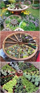 old wagon wheel water wheel with wooden spokes filled with plants