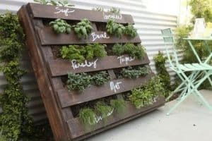 wooden pallet painted brown and lent up vertically against a wall with plants in the gaps between the rafters