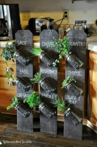 glass mason jars slanted 45 degrees upwards to the left with plants in them against black chalkboard with labels for each plant on them