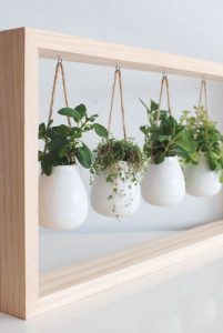 plants hanging in white rounded pots from a smooth brown wooden rectangle frame