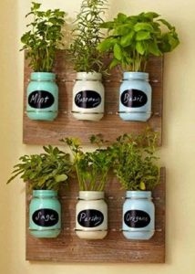 painted mason jars with plants in them and sticky labels on the front hung in rows of three against wooden oak style backdrop vertically