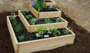 four different sized wooden boxes stacked on top of each other from small to large with plants and herbs planted around the outside of each one