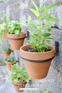 plant pots fixed to a brick wall using nails and black plastic