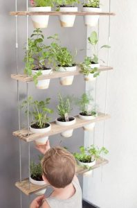 plant pots hanging through planks of wood with holes cut into them from plant pots and joined together by cables
