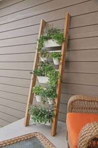 plants in plant pots on steps of a ladder which is leaning against a brown panelled wall