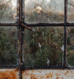 Dirty greenhouse window