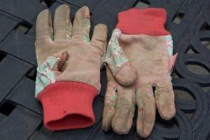 A pair of brown garden gloves