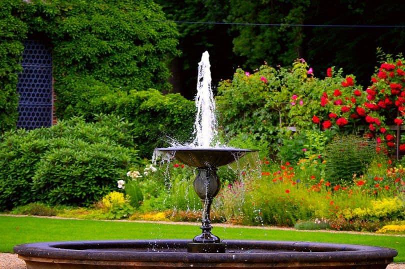 water fountain in a lush green garden