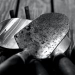 Most Common Gardening Tools and Their Uses