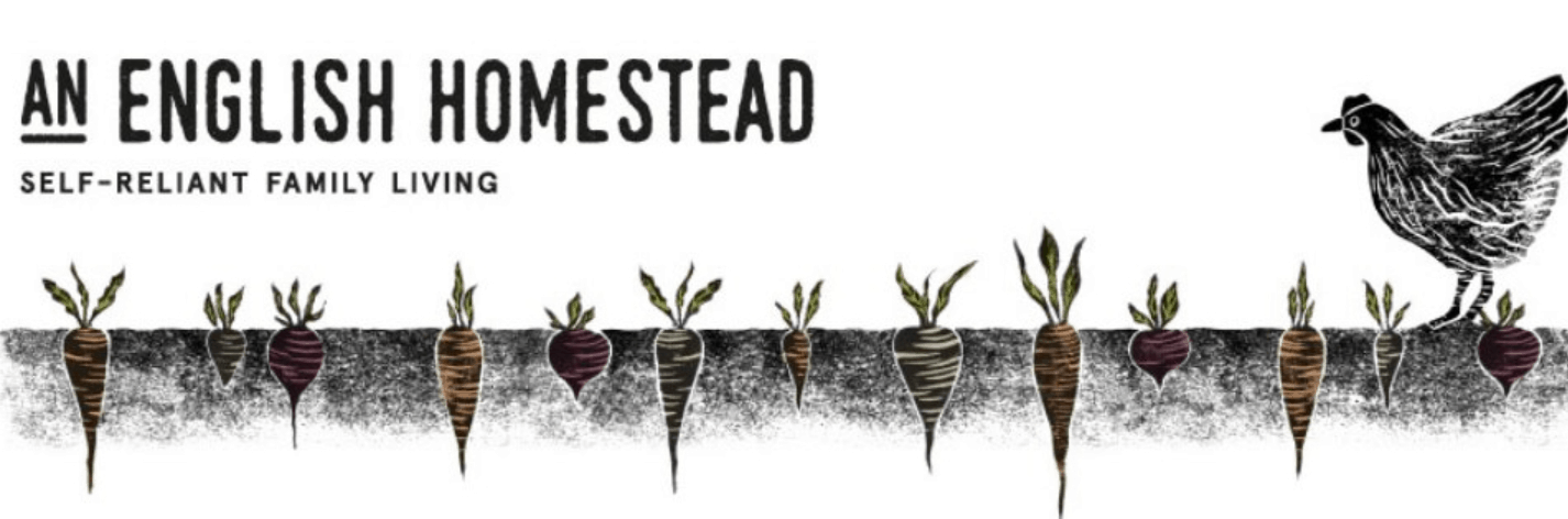 An English Homestead blog banner with a black and white cartoon of a chicken walking over carrots growing underground
