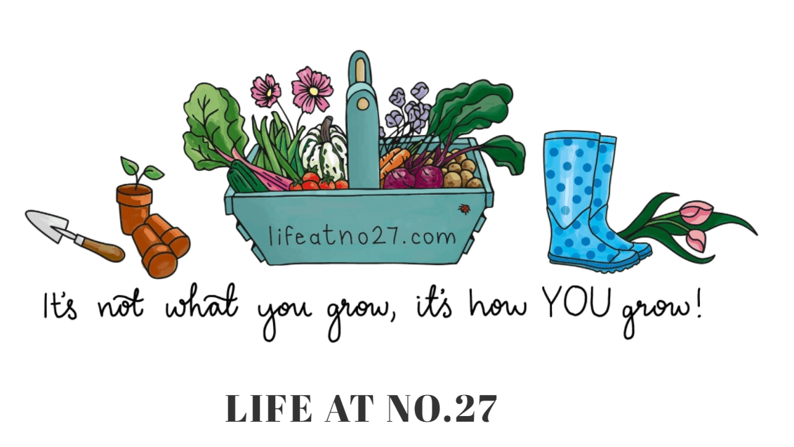 Life at No.27 Blog banner with cartoon garden equipment and vegetables