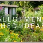 Allotment Shed Ideas: Things to Consider for the Best Allotment Shed