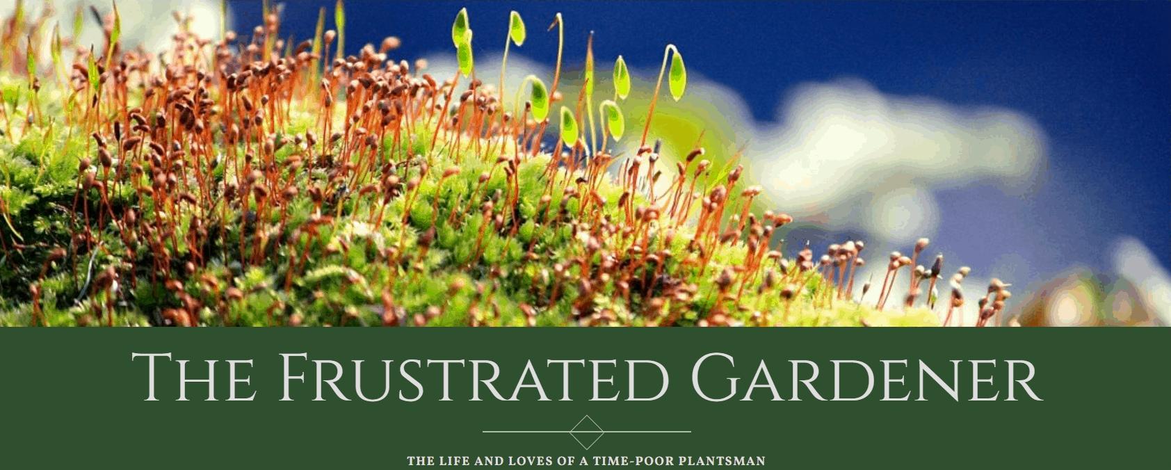 blog banner for the frustrated gardener