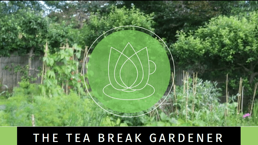 The Tea Break Gardener blog banner