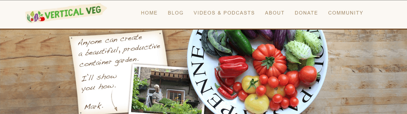 Vertical Veg blog banner with a plate of vegetables
