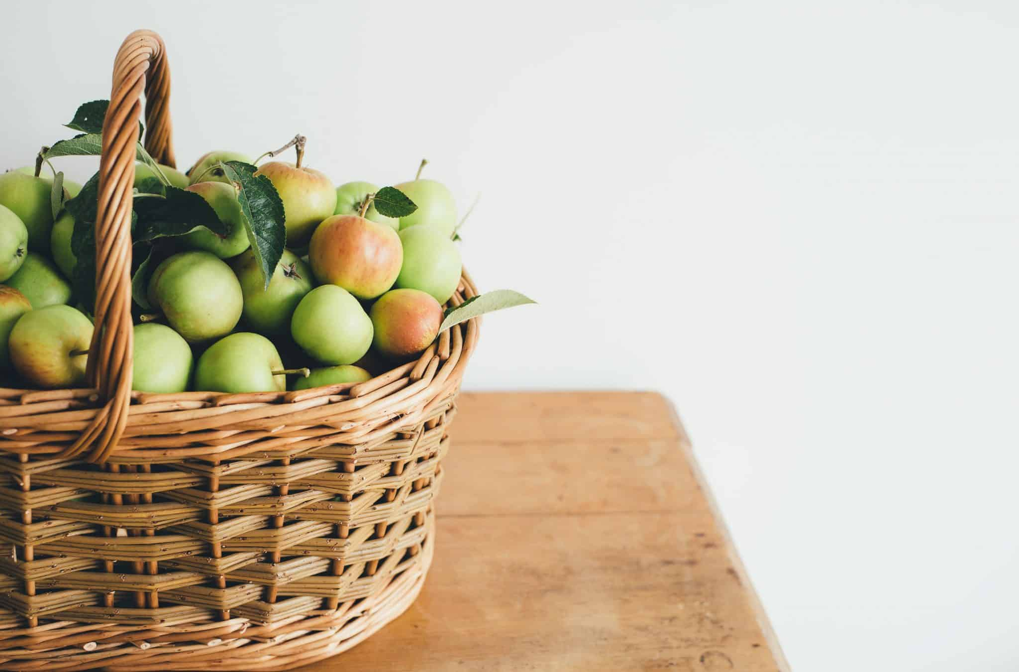 Windfall Basket of Apples on a table