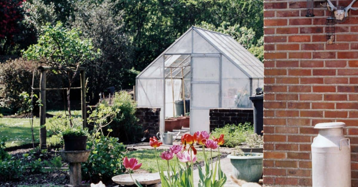 buying-a-greenhouse