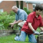 Gardening Glossary: Common Gardening Terms You Should Know