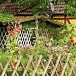 8 Top Tips in Designing a Cottage-Style Garden