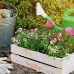 15 Effortless Garden Makeover Ideas to Spruce Up Your Garden
