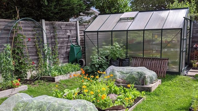 polcarbonate or glass greenhouse at the end of an allotment or garden