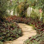 Small Garden Ideas: 3 Design Tricks to Make Your Garden Appear Bigger