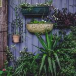 7 Budget-Friendly Ideas for a Small Garden