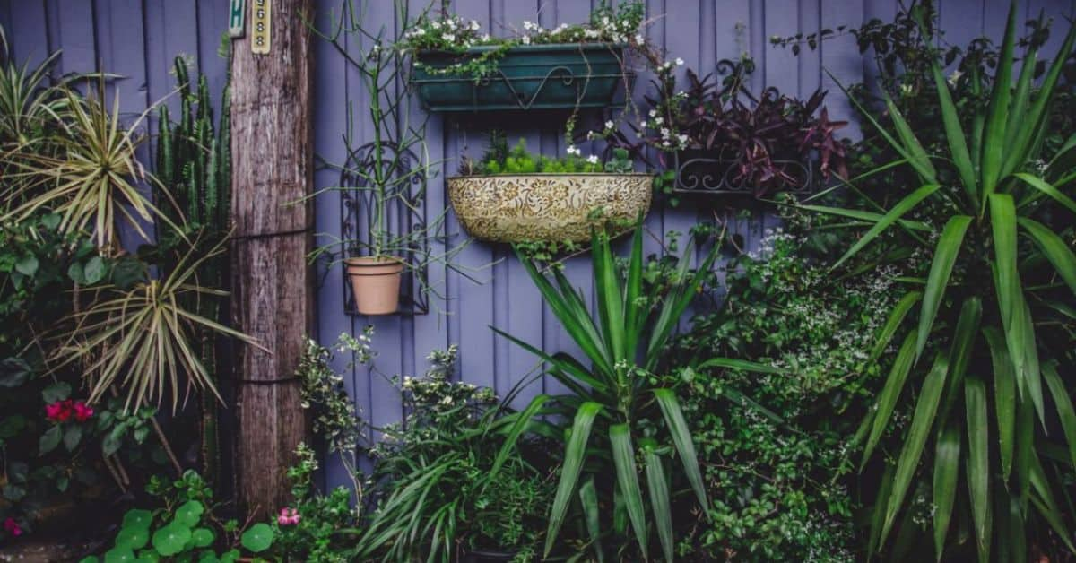 small-garden-ideas-on-a-budget