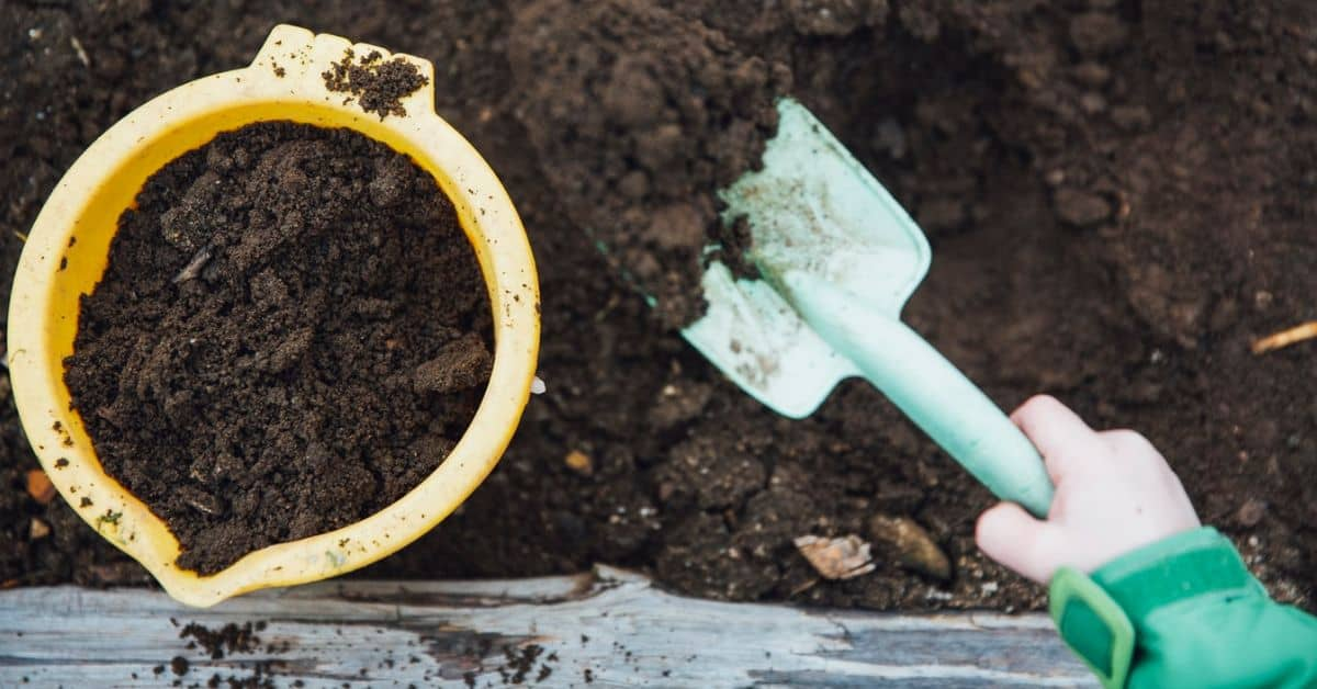Greenhouse gardening mistakes