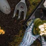 9 Expert Gardening Tips Every Gardener Should Know