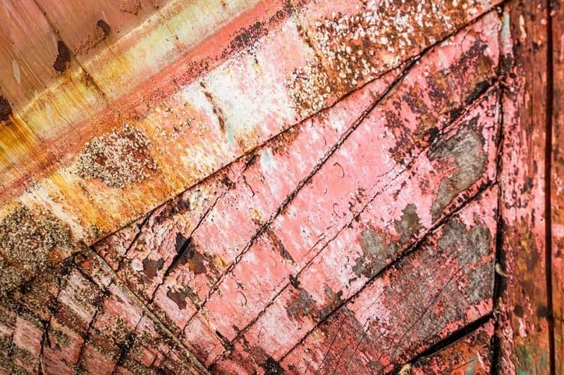 wooden shed roof with faded pink paint and brown and white mould